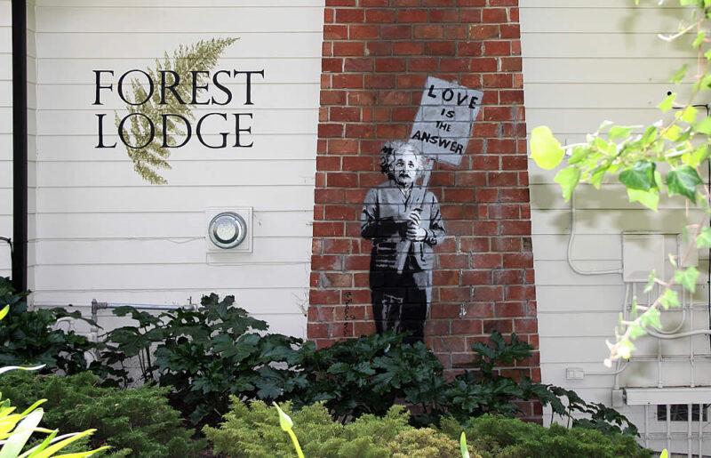 carmel forest lodge with einstein artwork