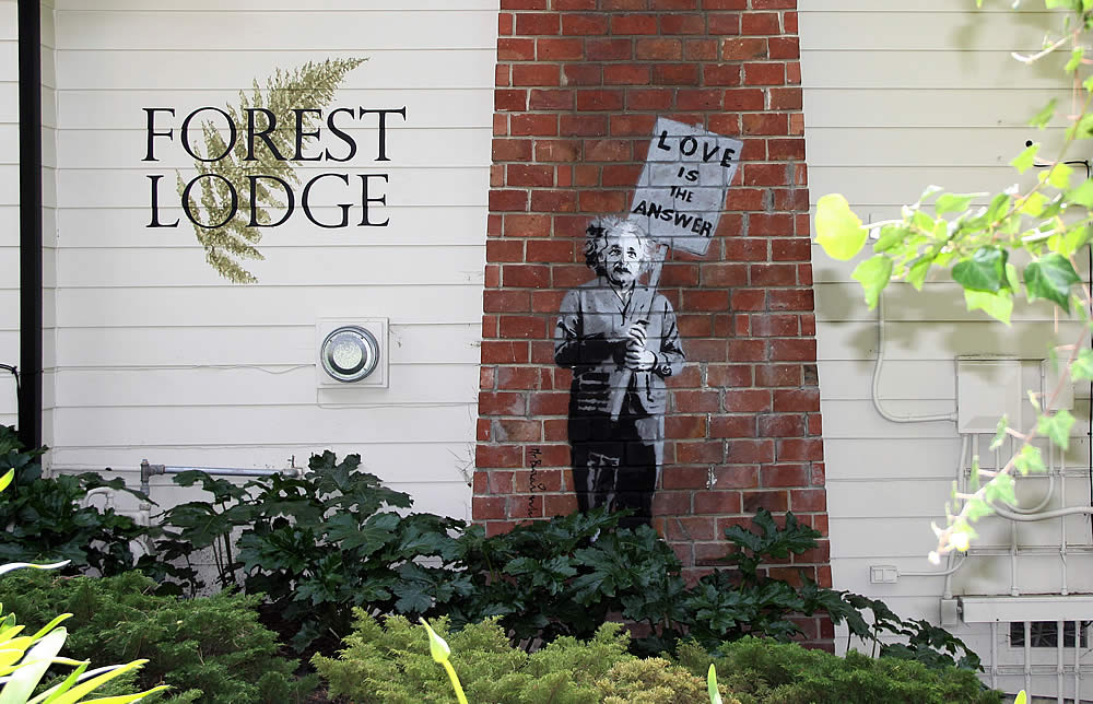 carmel bed and breakfast forest lodge with Einstein artwork on fireplace bricks